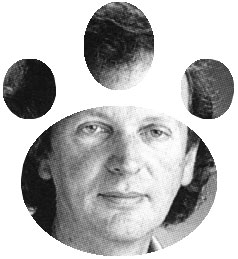 rupert sheldrake morphic resonance pdf
