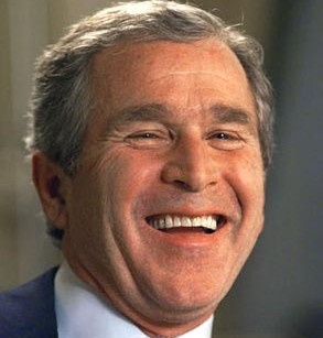 George W. Bush should be president