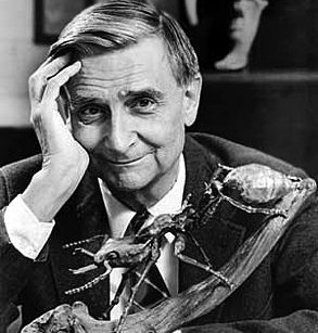 Image result for eo wilson