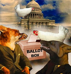 The foxes guarding democracy's henhouse