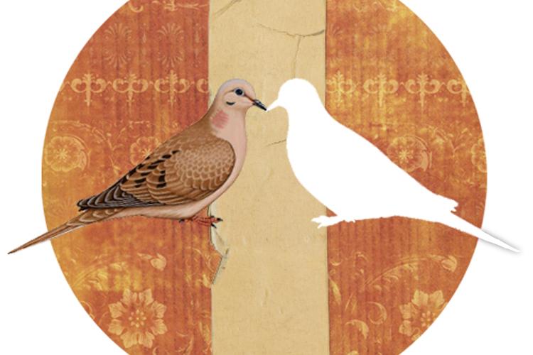 Atlas de pájaros reproductores del Estado de Nueva York - Departamento de Conservación Ambiental del Estado de Nueva York