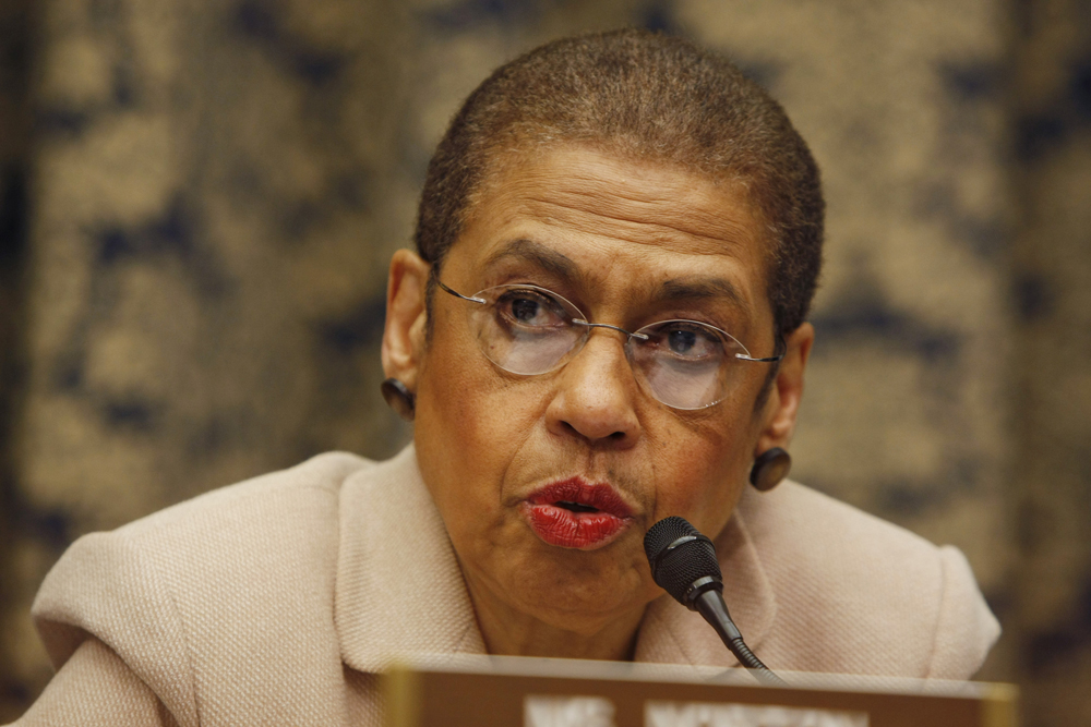 the life and career of eleanor holmes norton Eleanor holmes norton 46k likes 14-term democratic congresswoman representing the district of columbia  congresswoman eleanor holmes horton would like to invite district resident job seekers to meet with employers from the district of columbia, maryland, and virginia  who has spent his entire career working to disenfranchise african.