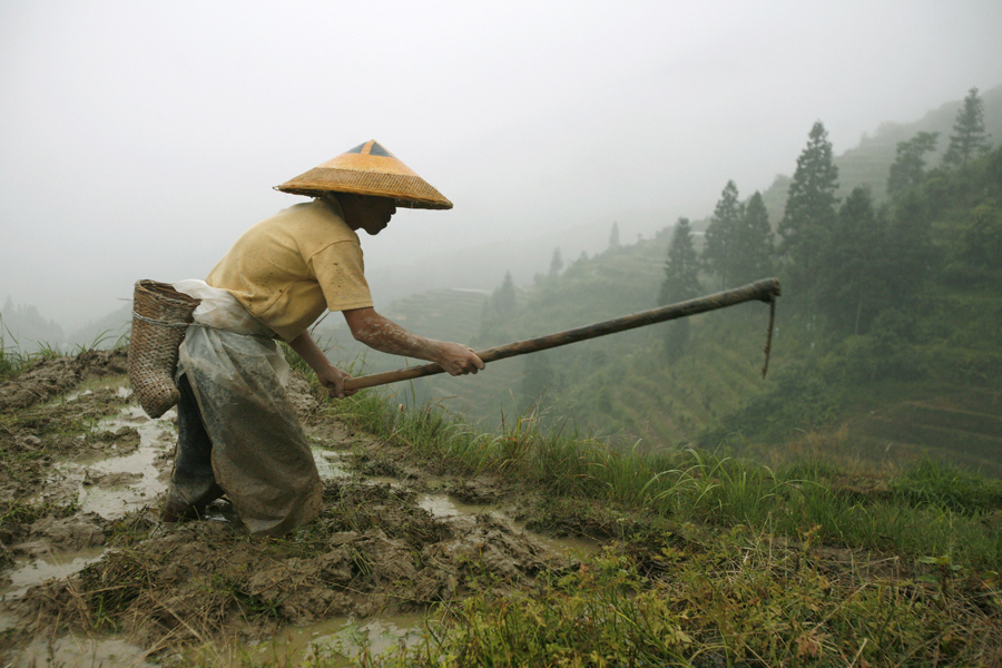 chinese farmers - photo #12