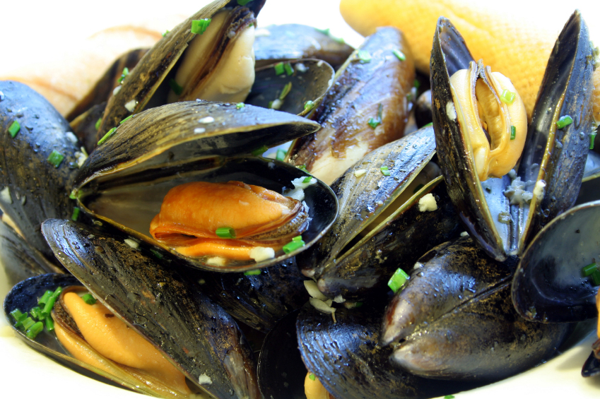 Eating Mussels When Pregnant 84
