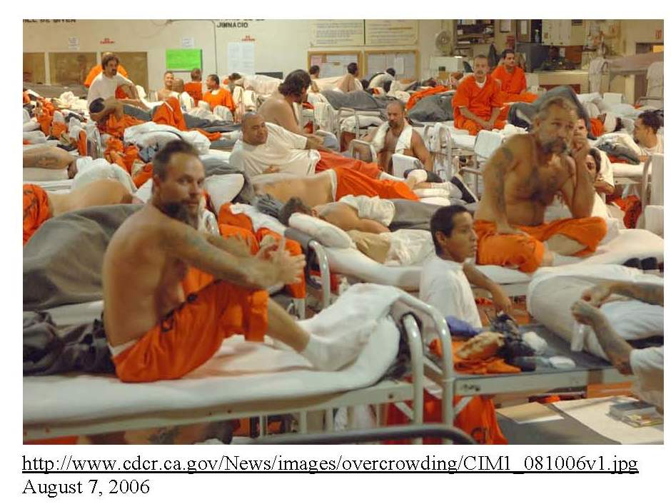 Chart of the week: The problem of prison overcrowding