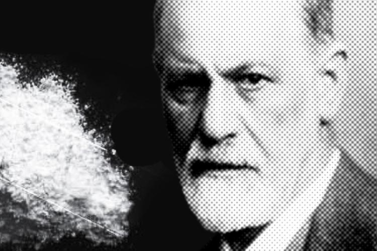 An Anatomy Of Addiction Sigmund Freud Cokehead Salon