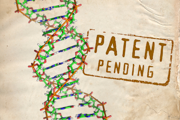 gene patent France's cellectis wins us patents for gene editing technology reuters staff the patents come on the back of another granted last year by the european patent.