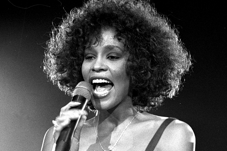 Whitney Houston: Didn't She Almost Have It All?