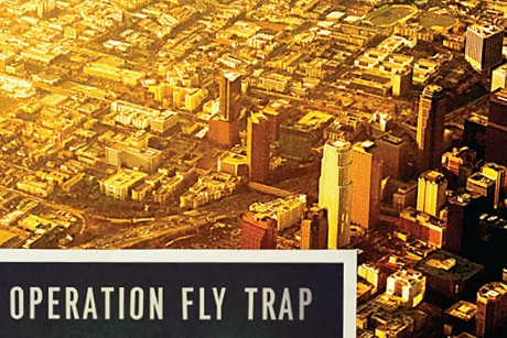 operation_fly_trap_rect