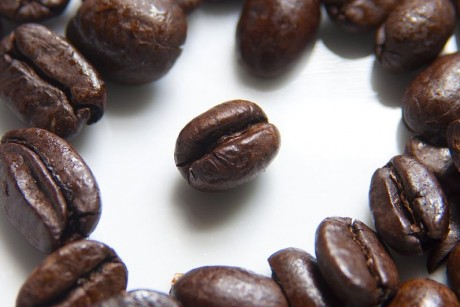 Coffee beans at risk of extinction