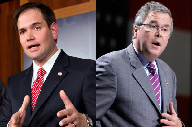 Marco Rubio vs. Jeb Bush