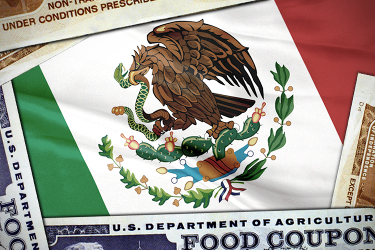 Is Obama Giving Food Stamps To Mexicans  Saloncom-8563