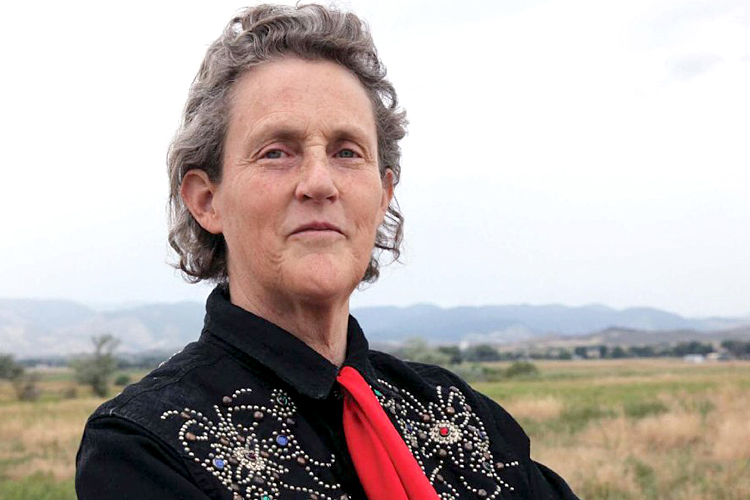 "Temple Grandin on DSM-5: ""Sounds like diagnosis by ..."