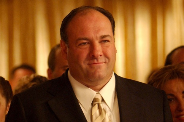 view download images  Images   Hollywood remembers James Gandolfini -