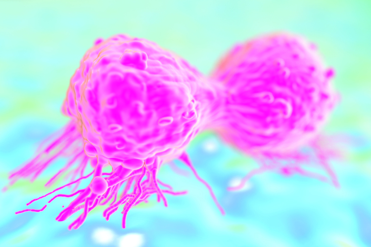 cancer cell research paper View cancer and cell cycle research papers on academiaedu for free.