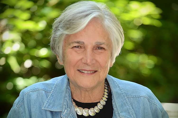 Diane Ravitchs Review Of Ghosts In >> Say Goodbye To Public Schools Diane Ravitch Warns Salon Some Cities