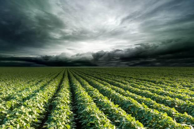 crops_stormclouds-620x412.jpg
