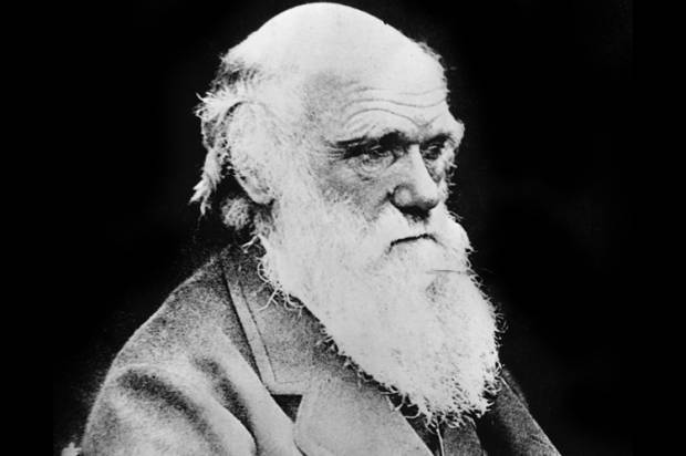 The law according to Darwin: Evolution, neuroscience and justice