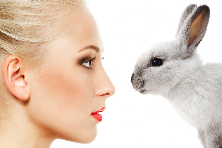 animal testing of products can save lives For drugs and biologics, the focus of animal testing is on the drug's nature, chemistry,  why are animals used for testing medical products.