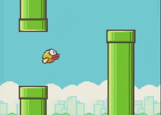 Flappy bird betting trends bip 101 bitcoins