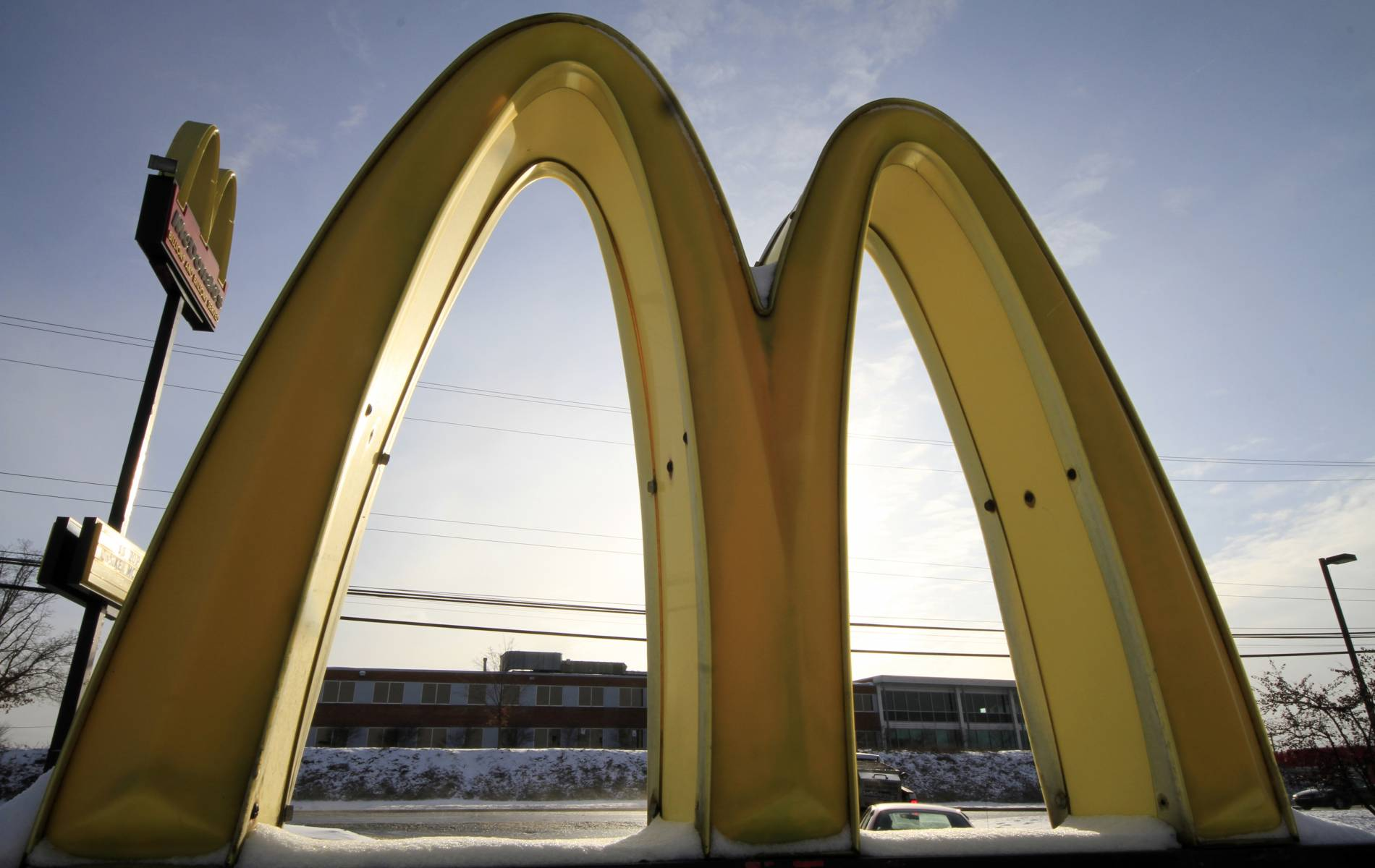 Are Fast Food Chains An Oligarchy