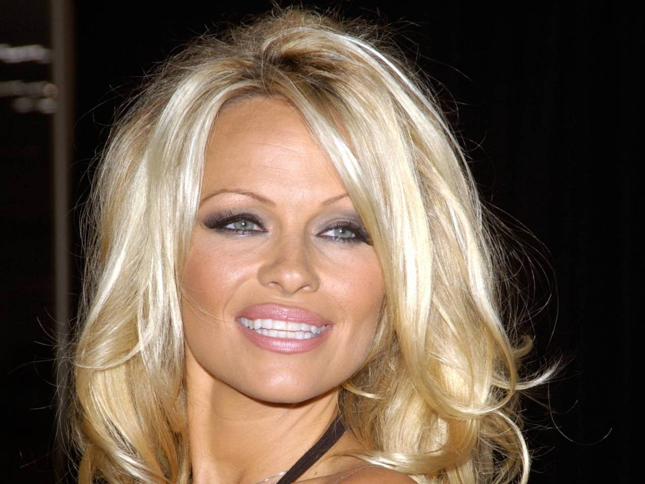 Pamela Anderson earned a  million dollar salary, leaving the net worth at 4 million in 2017