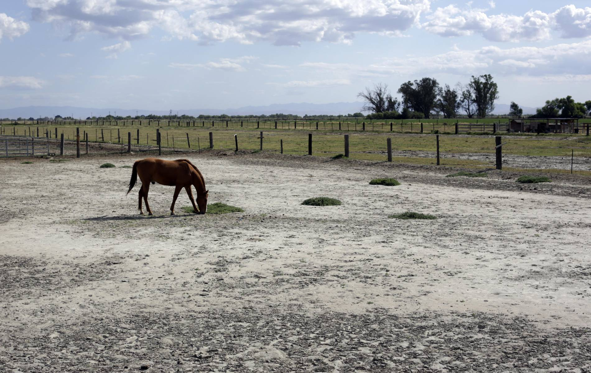 a drought has come And the dry spell, which has left more than 95 percent of nsw in drought, according to department of primary industries, has no end in sight more from aolcom : man shot dead by police who.
