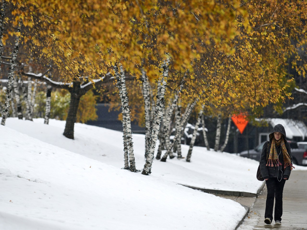 New York State Snow Storm