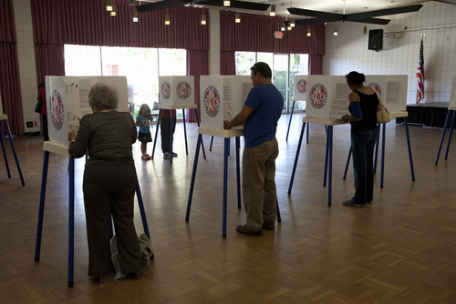 The ominous reason voter turnout was so low this election cycle