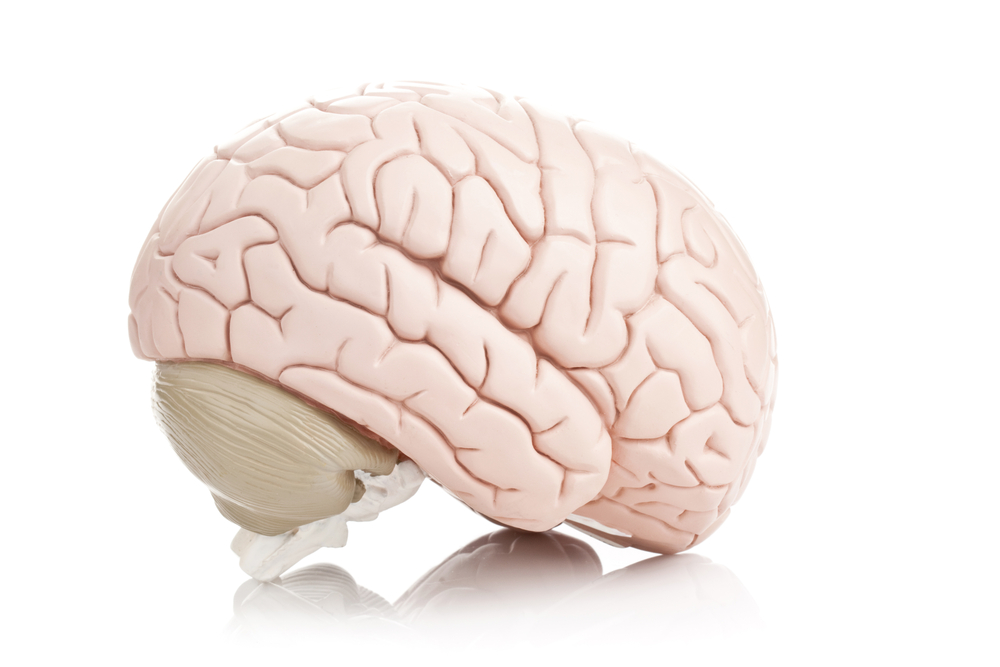 Brain Training Doesnt Make You Smarter >> Brain Training Doesn T Make You Smarter Salon Com