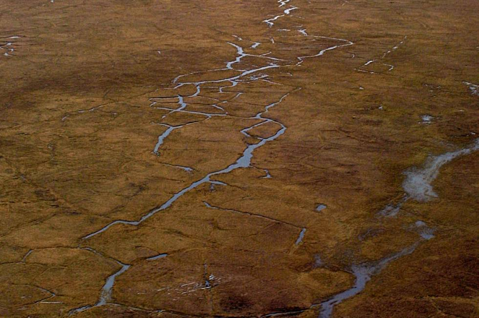 Sale of Arctic oil leases goes bust thumbnail