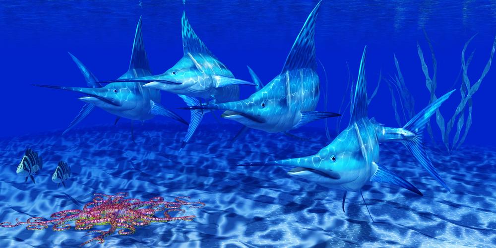 the secret of the swordfish pdf