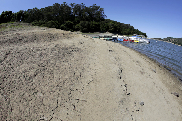 an examination of the drought in california As the drought persists governor jerry brown has made some water conservation measures permanent, such as a ban on overwatering lawns.