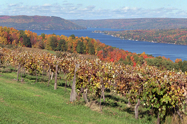 The Fight For The Finger Lakes Why Upstate New York Is