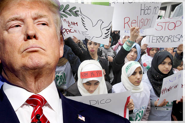 essays on racism against muslims Racism in america - research essay  there appears to be a racist feeling against muslims in america this is a sentiment that has been kicking around the usa.