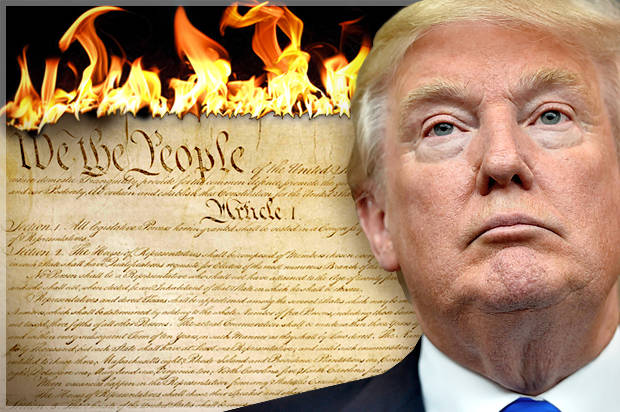 Image result for trump constitution