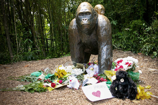 Gorilla Memorial