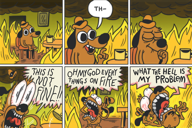 this is fine cartoonist on why it s not fine after all it s a