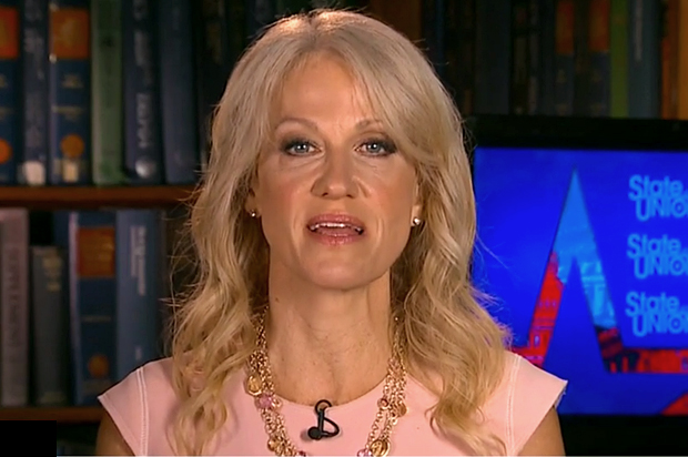 Kellyanne Conway: People would cheer if I were 'shot and killed'