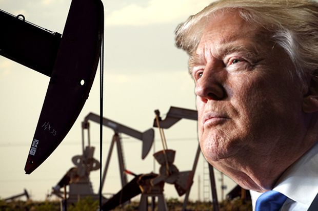 Image result for donald trump oil policy