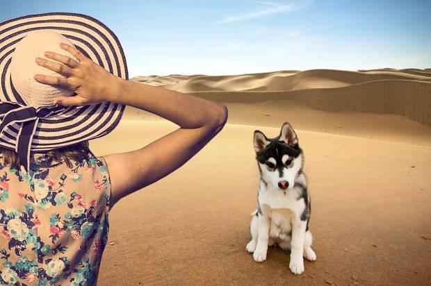 Woman; Dog