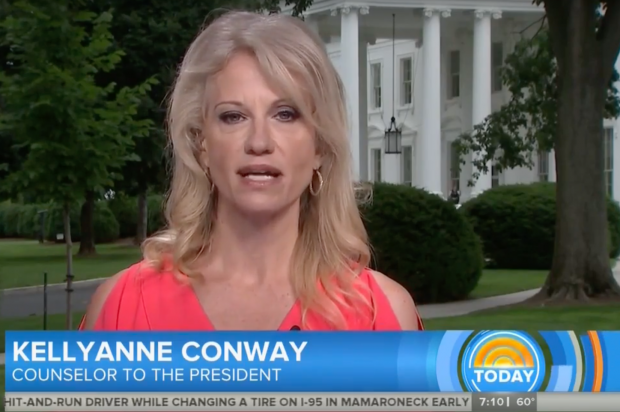 Kellyanne Conway Today show