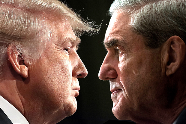 Image result for mueller & trump
