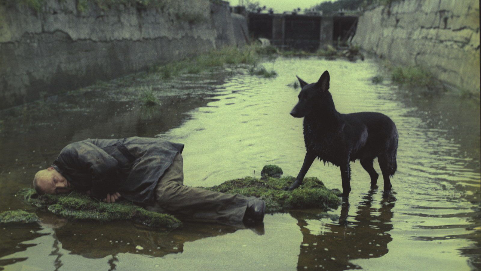 Why Andrei Tarkovskys Interminably Dull 1979 Sci Fi Masterpiece Stalker Is The Movie We Need Right Now