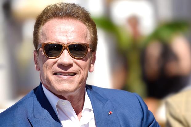 Arnold Schwarzenegger Schools Trump On How To Respond To Nazis
