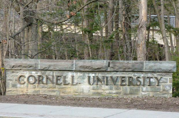 Police are investigating the assault of a black Cornell student as a hate crime