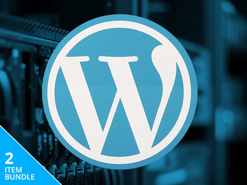 Learn to build and customize your own WordPress websites