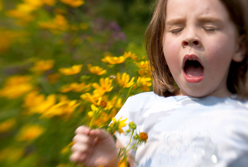 The climate crisis is about to make allergy season miserable