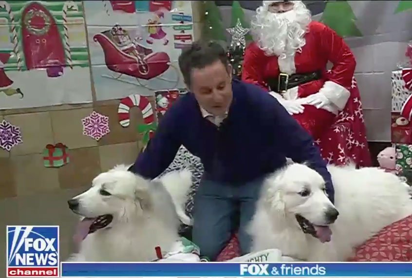 """Fox & Chums"" suspends impeachment protection to tag photos of host visiting Santa with his canines thumbnail"