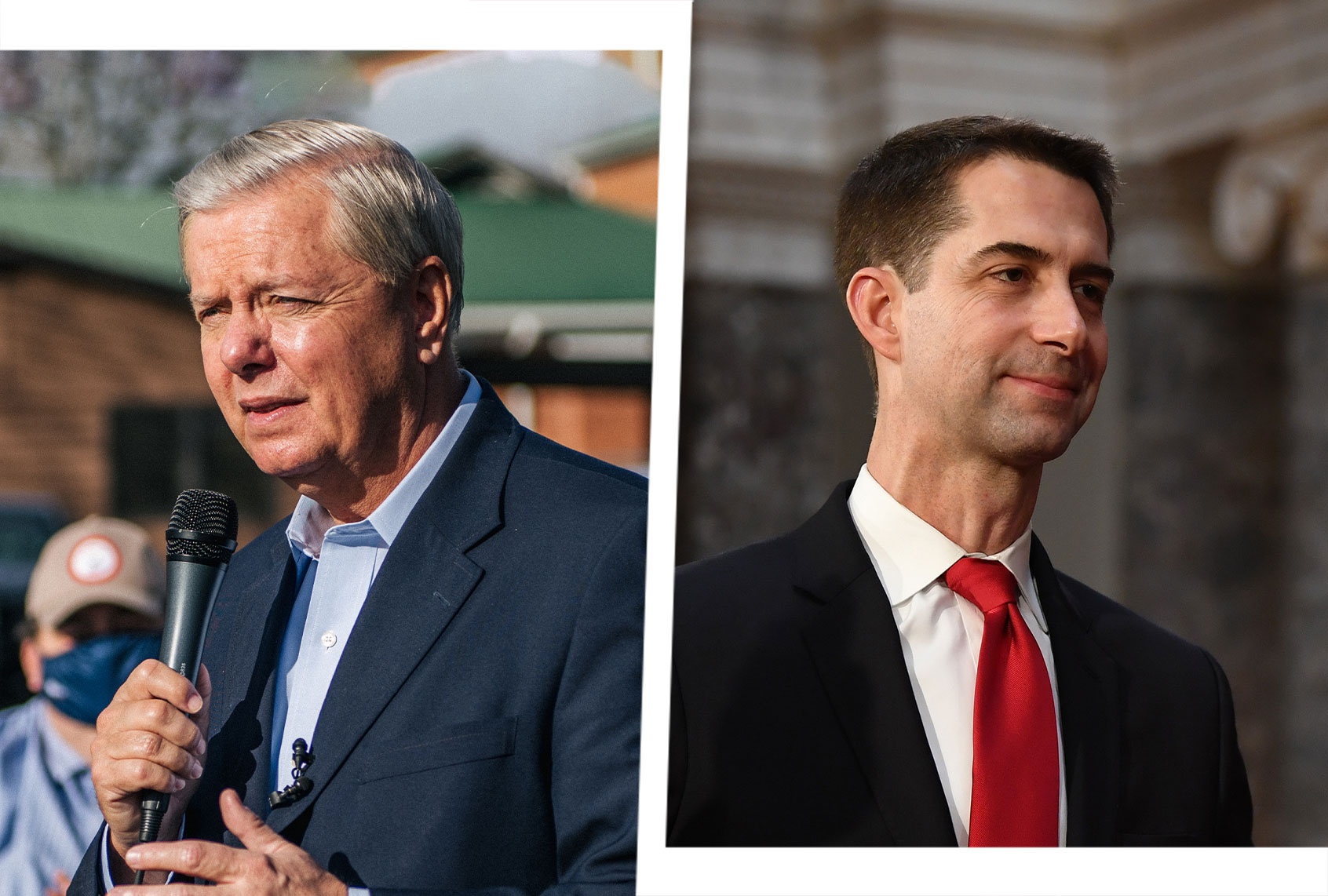 <p>Trump supporters turn on Lindsey Graham, Tom Cotton for Breaking up with GOP election challenge thumbnail